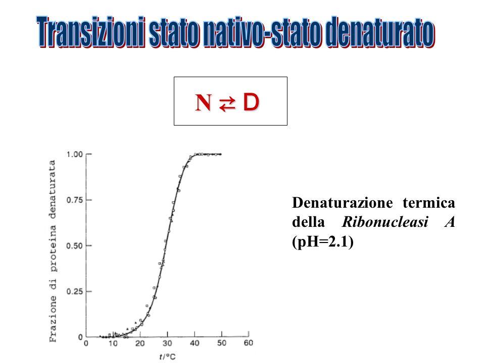 Transizioni stato nativo-stato denaturato
