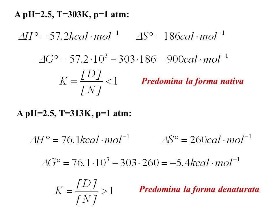 A pH=2.5, T=303K, p=1 atm: Predomina la forma nativa.
