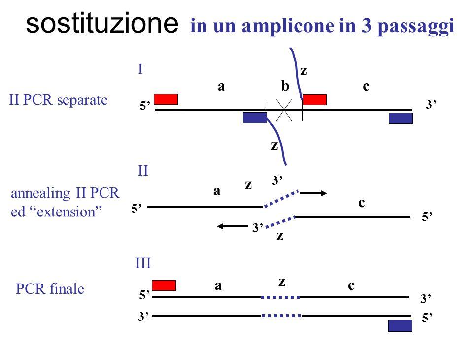 sostituzione in un amplicone in 3 passaggi a c b z I II