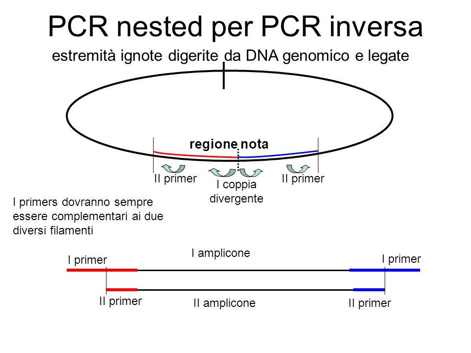 PCR nested per PCR inversa