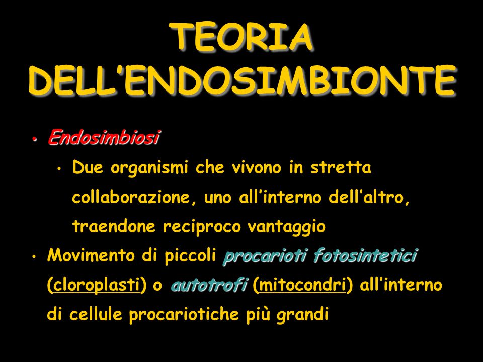 TEORIA DELL'ENDOSIMBIONTE