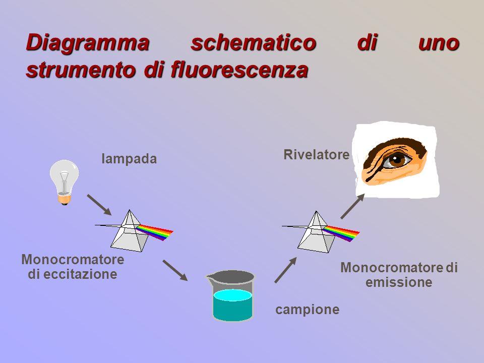 Diagramma schematico di uno strumento di fluorescenza