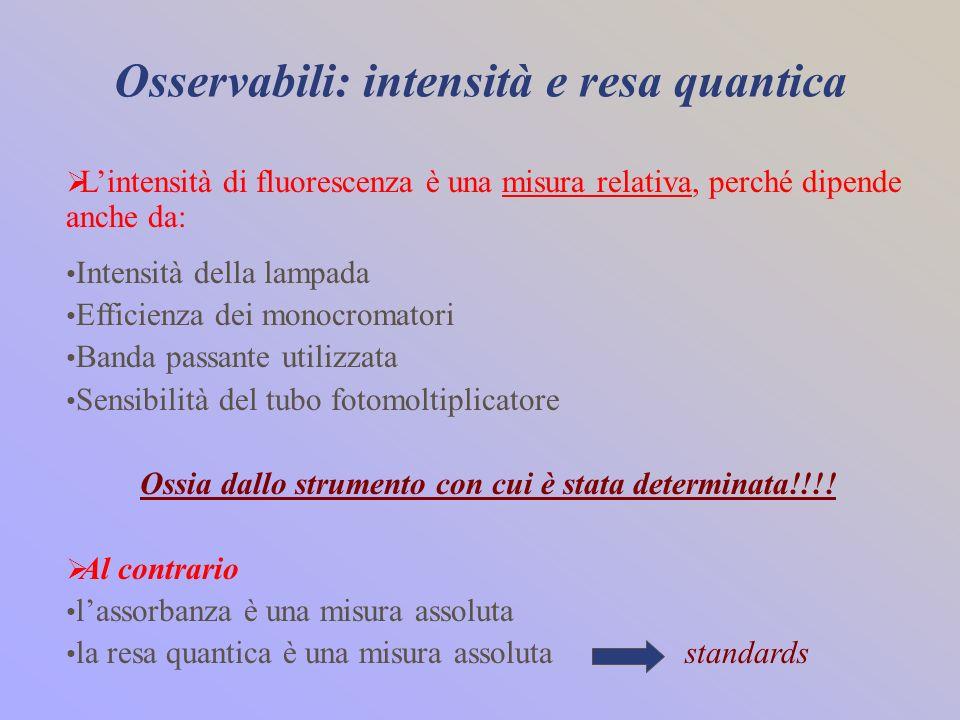 Osservabili: intensità e resa quantica