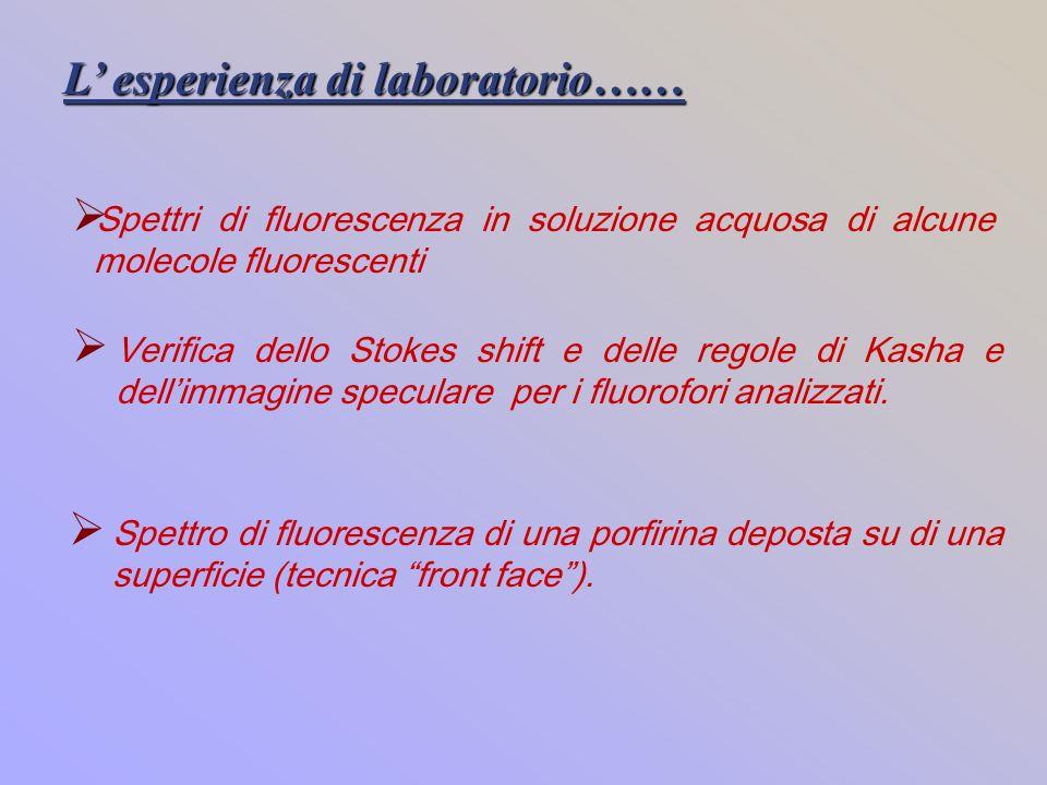 L' esperienza di laboratorio……