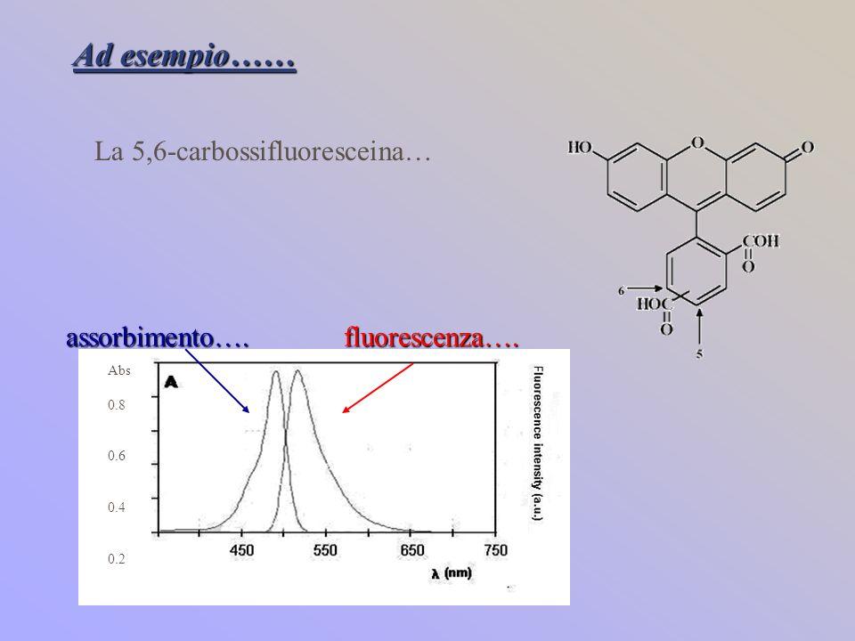 Ad esempio…… La 5,6-carbossifluoresceina… assorbimento….