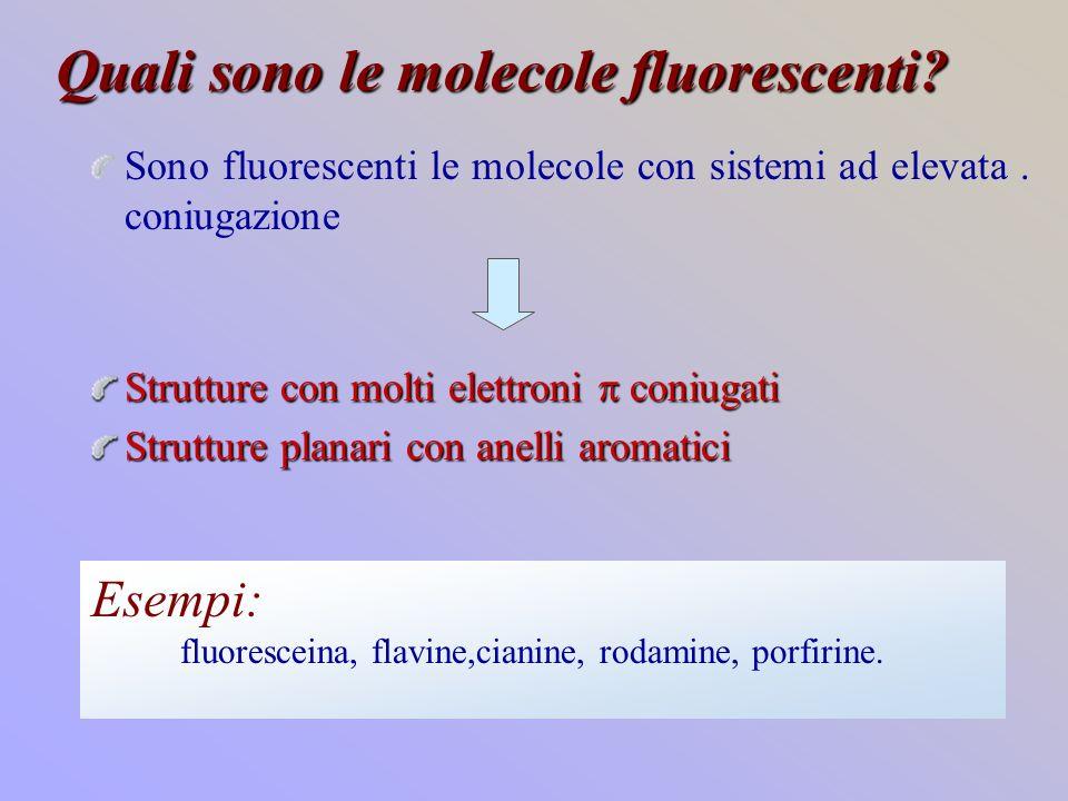 Quali sono le molecole fluorescenti
