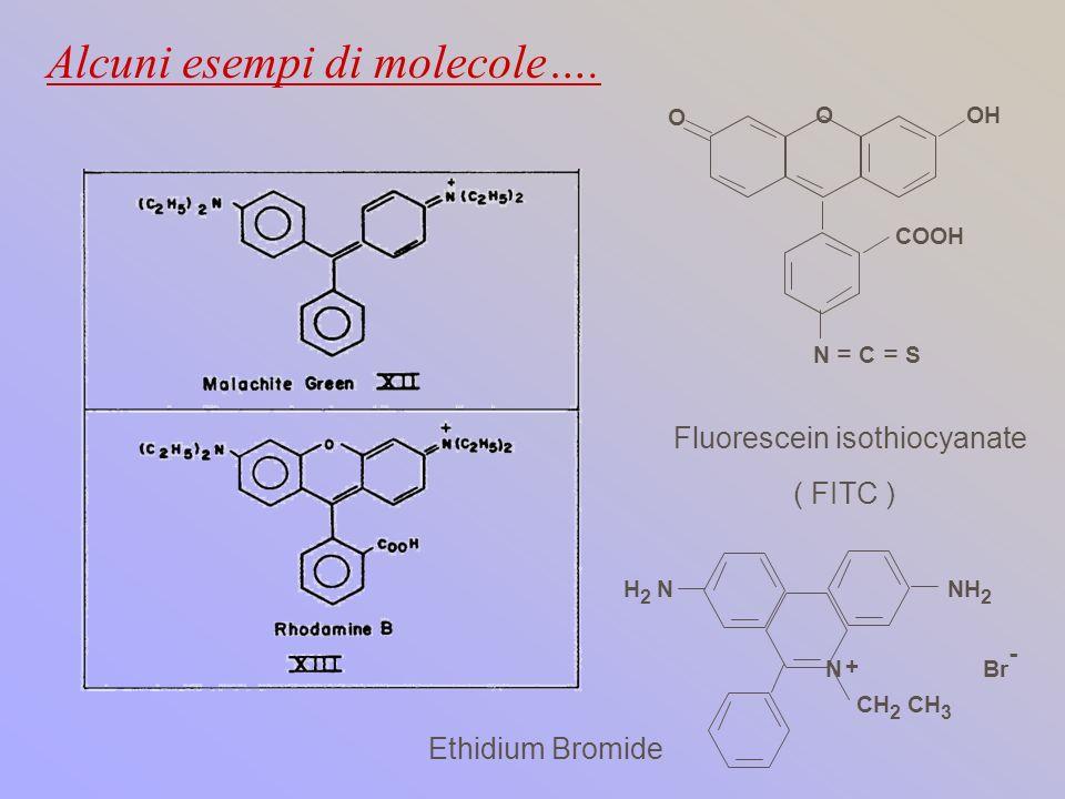 Alcuni esempi di molecole….
