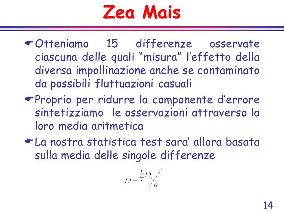Zea Mais