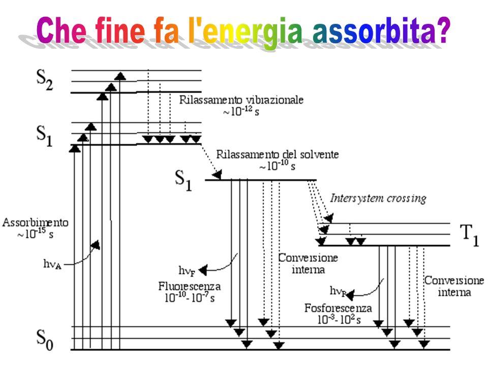 Che fine fa l energia assorbita