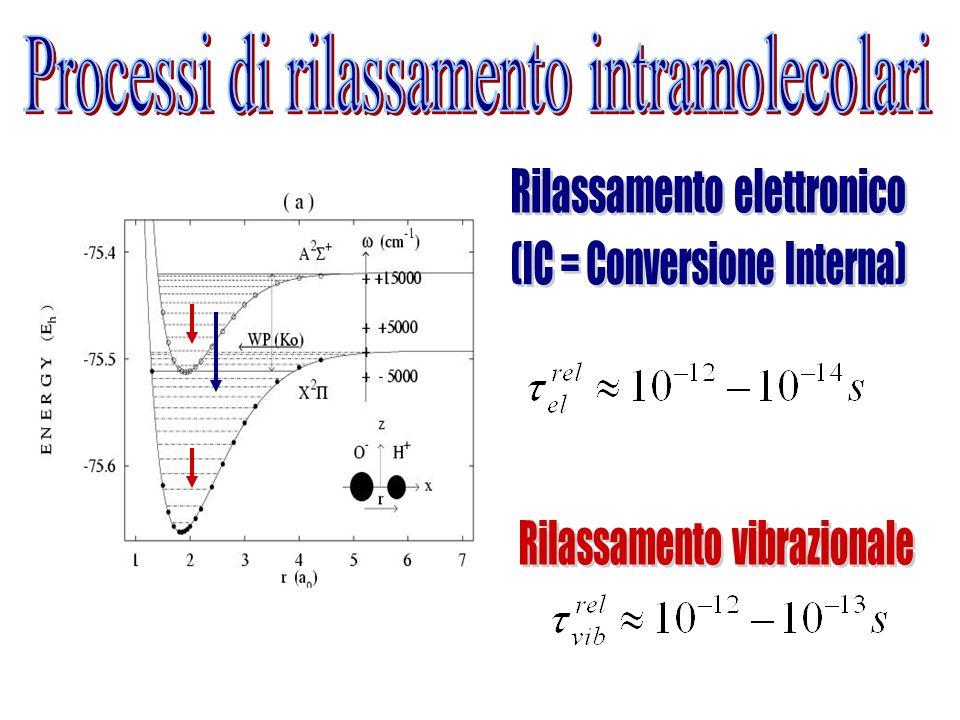 Processi di rilassamento intramolecolari