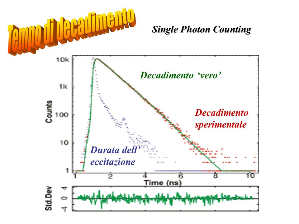 Tempo di decadimento Single Photon Counting Decadimento 'vero'