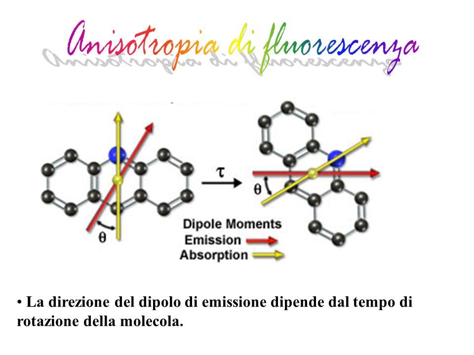 Anisotropia di fluorescenza
