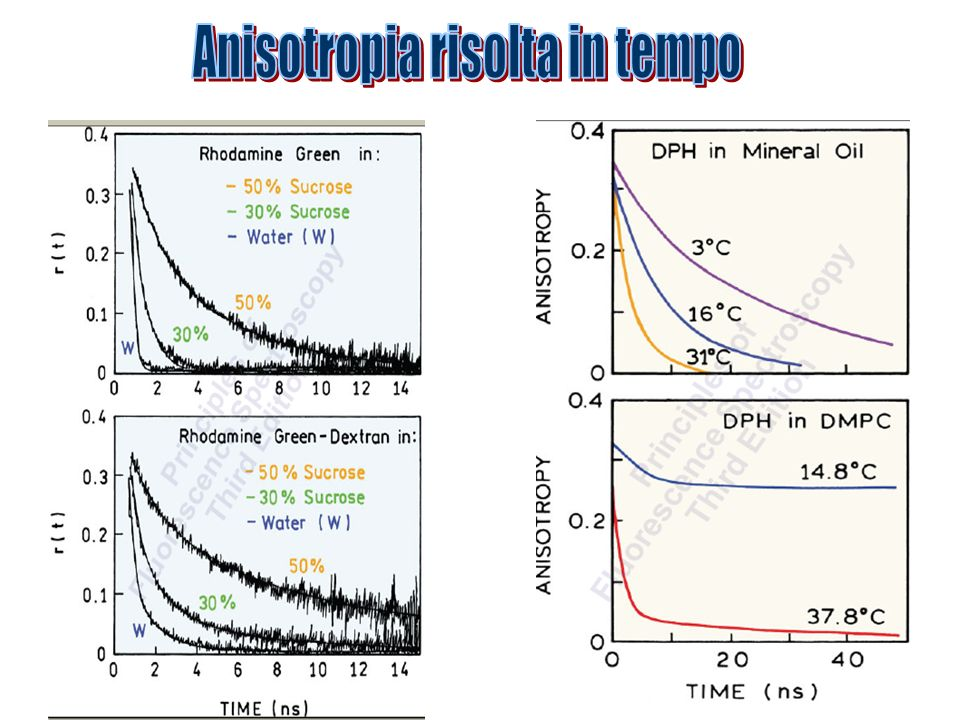 Anisotropia risolta in tempo
