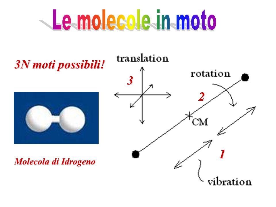 Le molecole in moto 3N moti possibili! 3 2 1 Molecola di Idrogeno