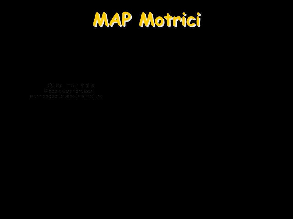 MAP Motrici