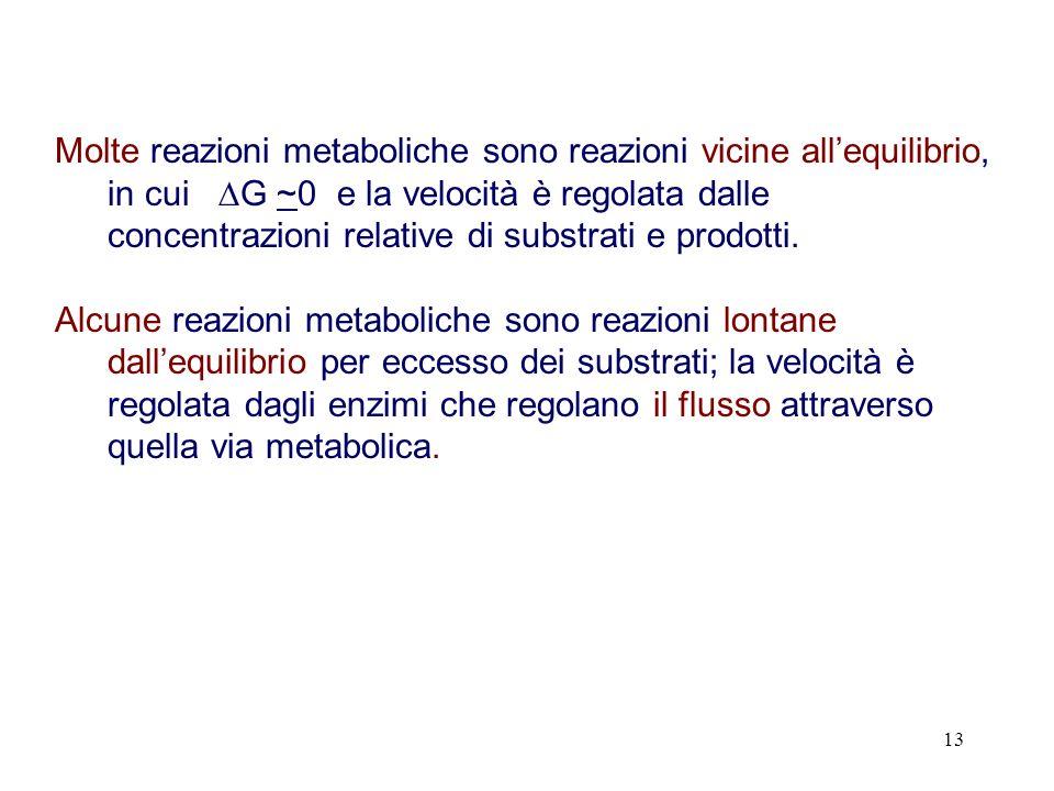 Molte reazioni metaboliche sono reazioni vicine all'equilibrio, in cui G ~0 e la velocità è regolata dalle concentrazioni relative di substrati e prodotti.