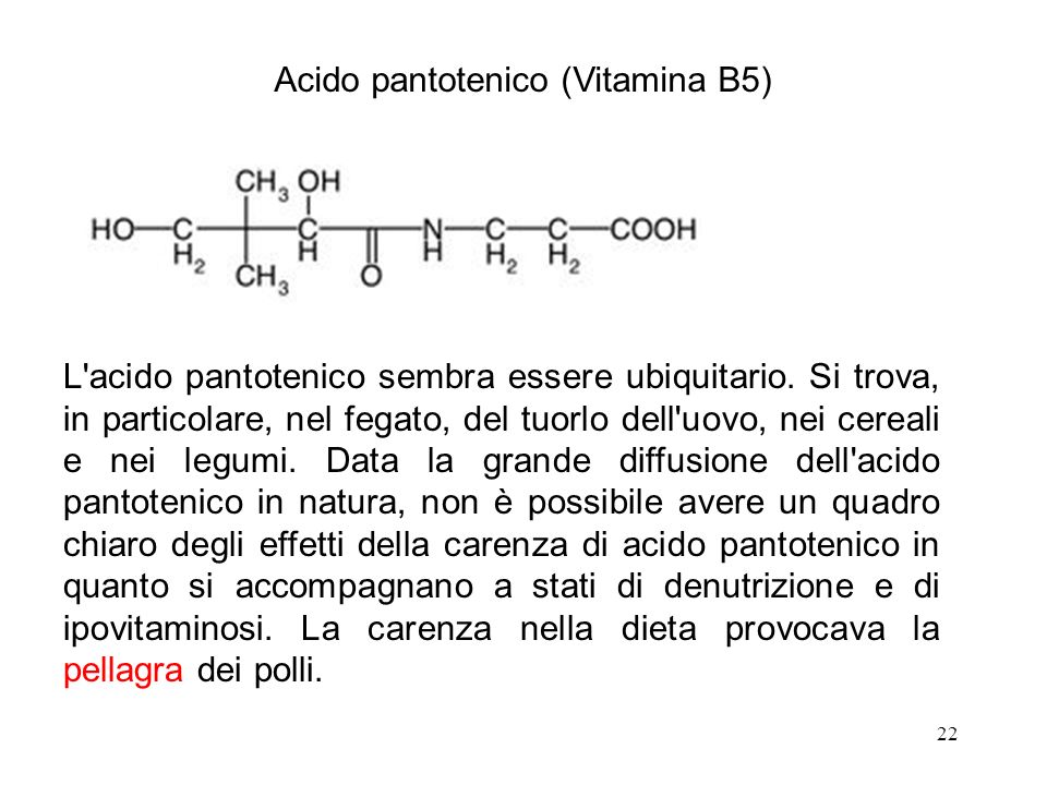 Acido pantotenico (Vitamina B5)