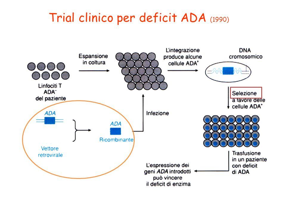 Trial clinico per deficit ADA (1990)