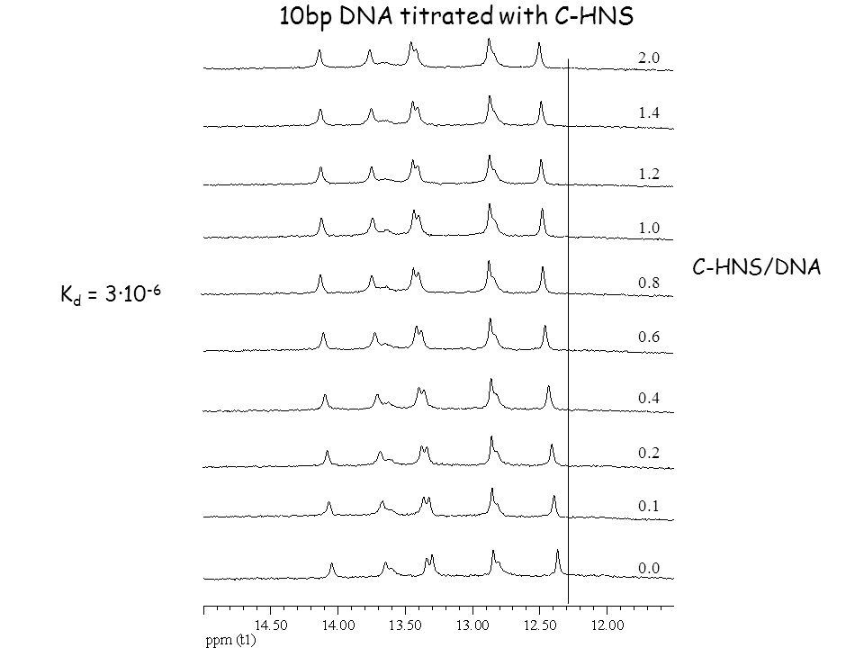 10bp DNA titrated with C-HNS