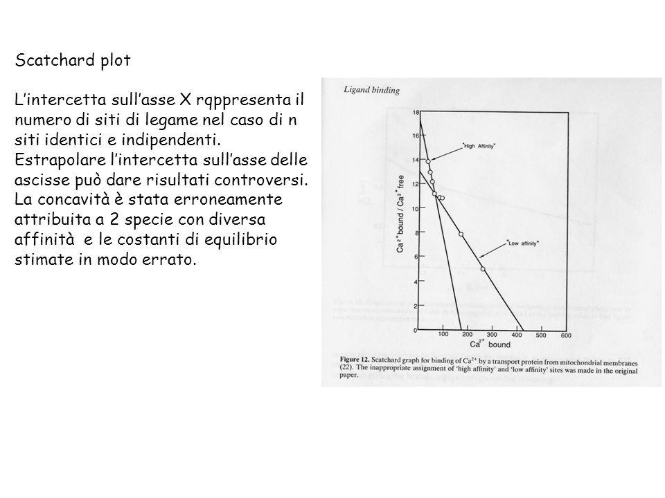 Scatchard plot L'intercetta sull'asse X rqppresenta il. numero di siti di legame nel caso di n. siti identici e indipendenti.