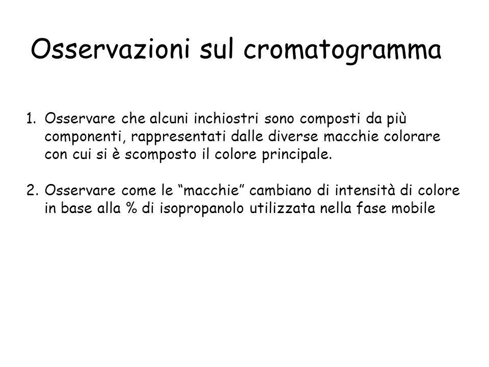 Osservazioni sul cromatogramma