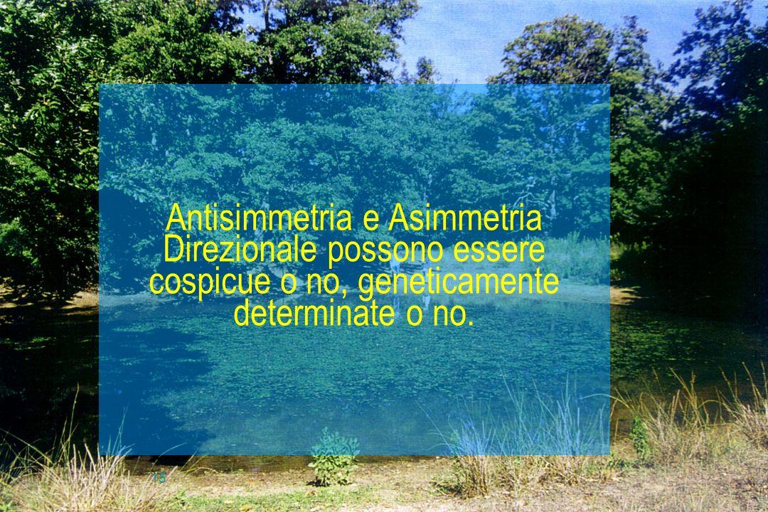 Antisimmetria e Asimmetria Direzionale possono essere cospicue o no, geneticamente determinate o no.