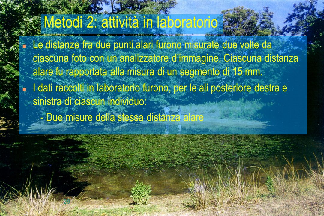 Metodi 2: attività in laboratorio