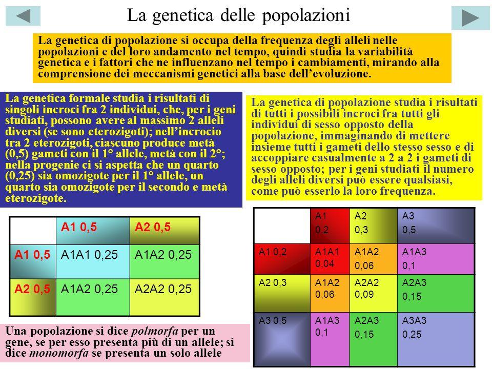 La genetica delle popolazioni