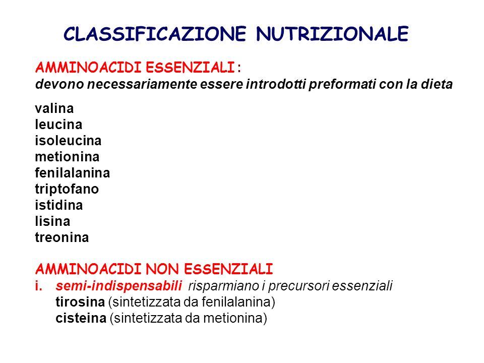 CLASSIFICAZIONE NUTRIZIONALE