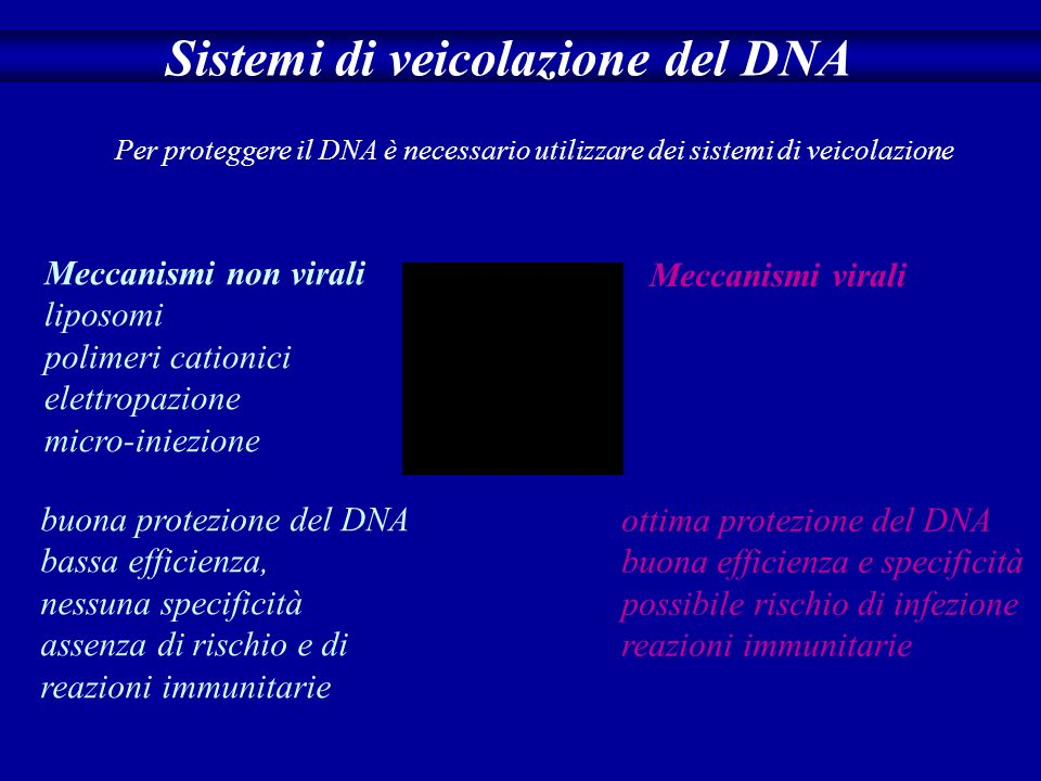 Il DNA si degrada velocemente