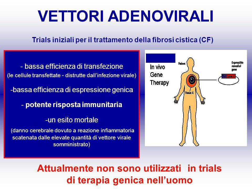 Trials iniziali per il trattamento della fibrosi cistica (CF)