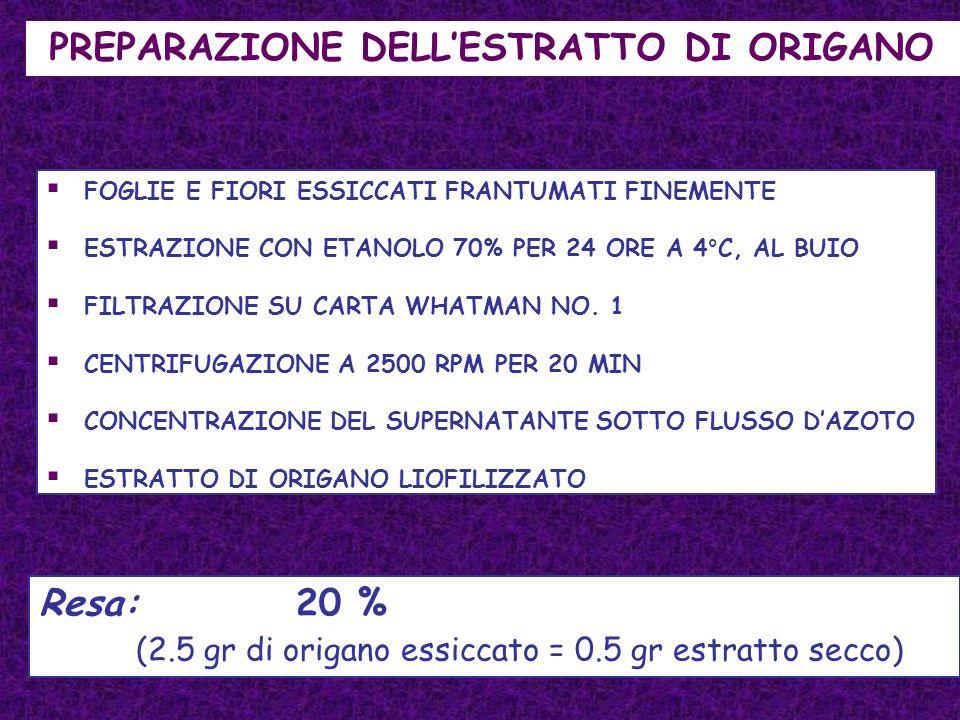 PREPARAZIONE DELL'ESTRATTO DI ORIGANO