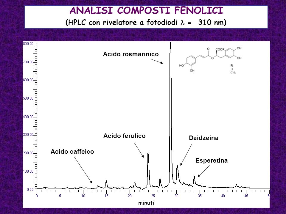ANALISI COMPOSTI FENOLICI (HPLC con rivelatore a fotodiodi  = 310 nm)