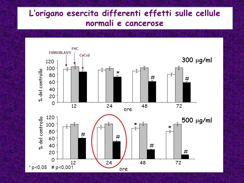 L'origano esercita differenti effetti sulle cellule normali e cancerose
