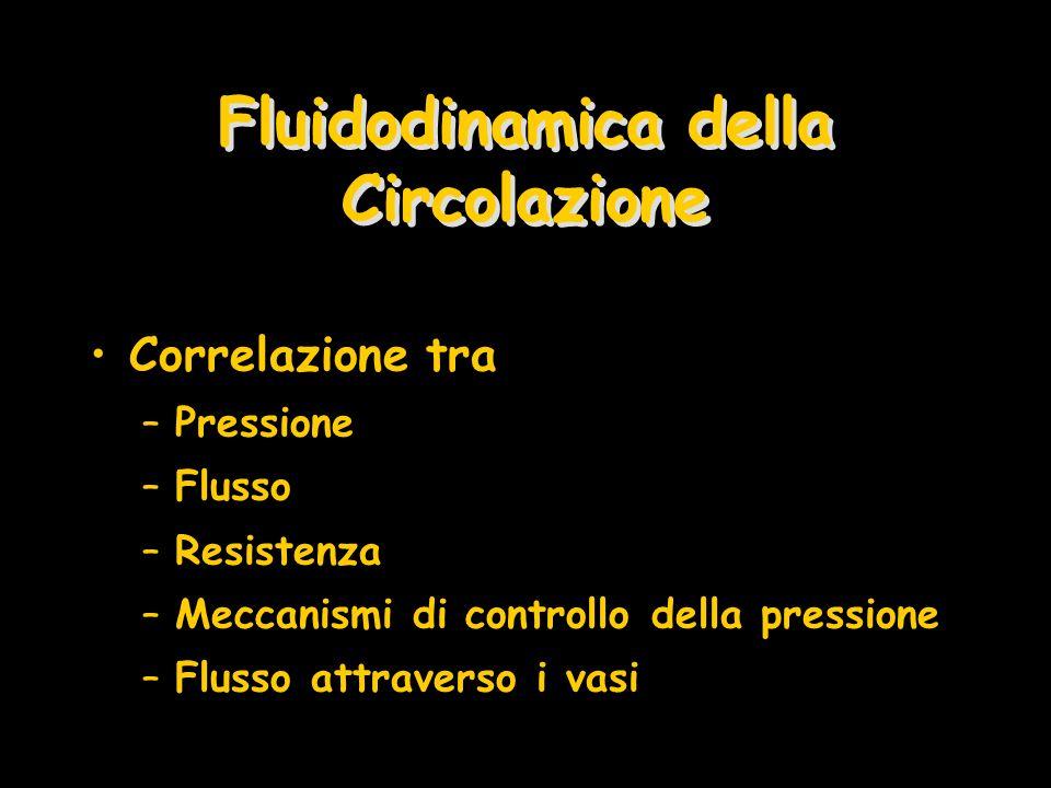 Fluidodinamica della Circolazione