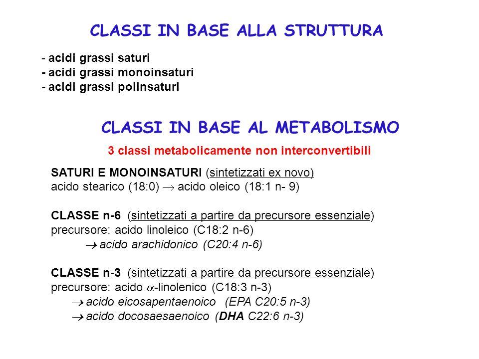 3 classi metabolicamente non interconvertibili