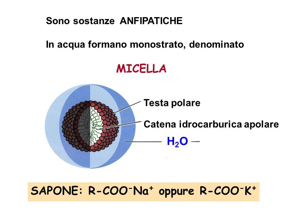 SAPONE: R-COO-Na+ oppure R-COO-K+ H2O