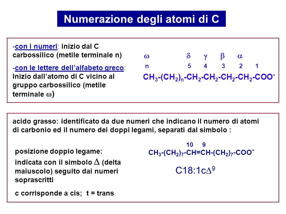 Numerazione degli atomi di C