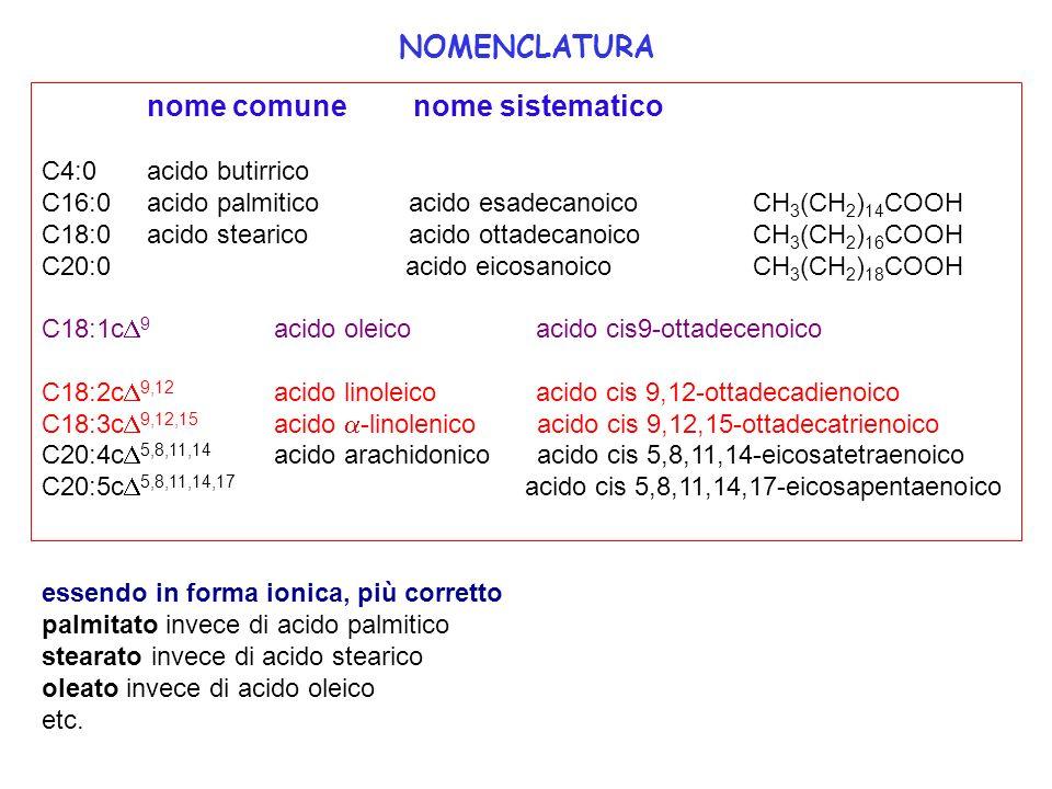 NOMENCLATURA C4:0 acido butirrico