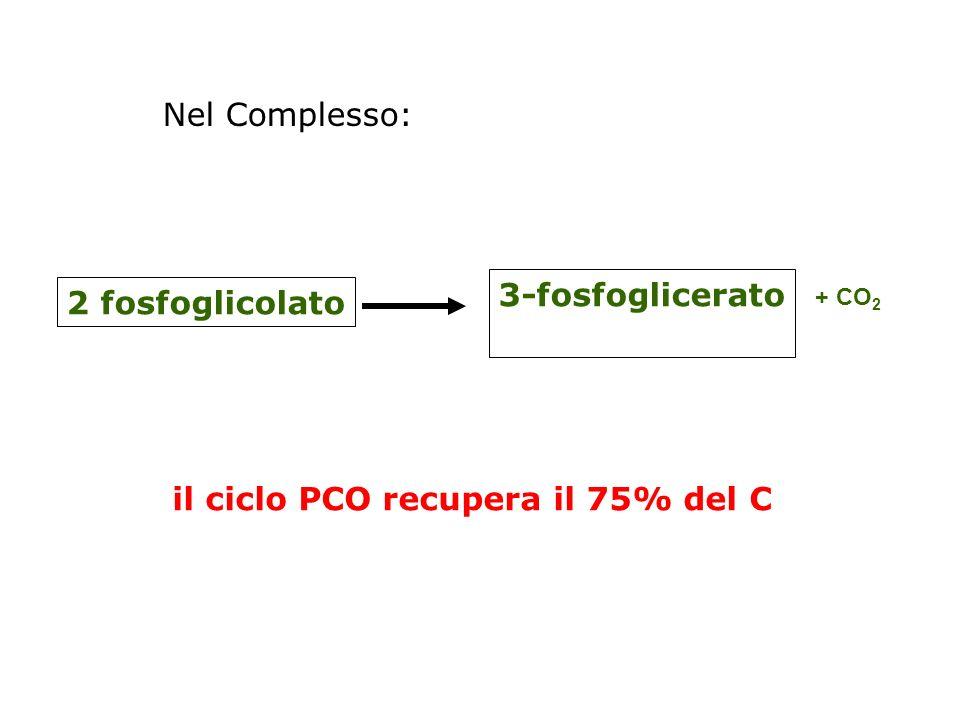 il ciclo PCO recupera il 75% del C