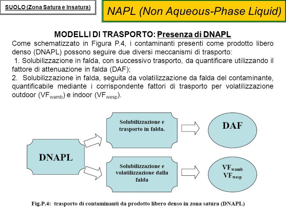 MODELLI DI TRASPORTO: Presenza di DNAPL