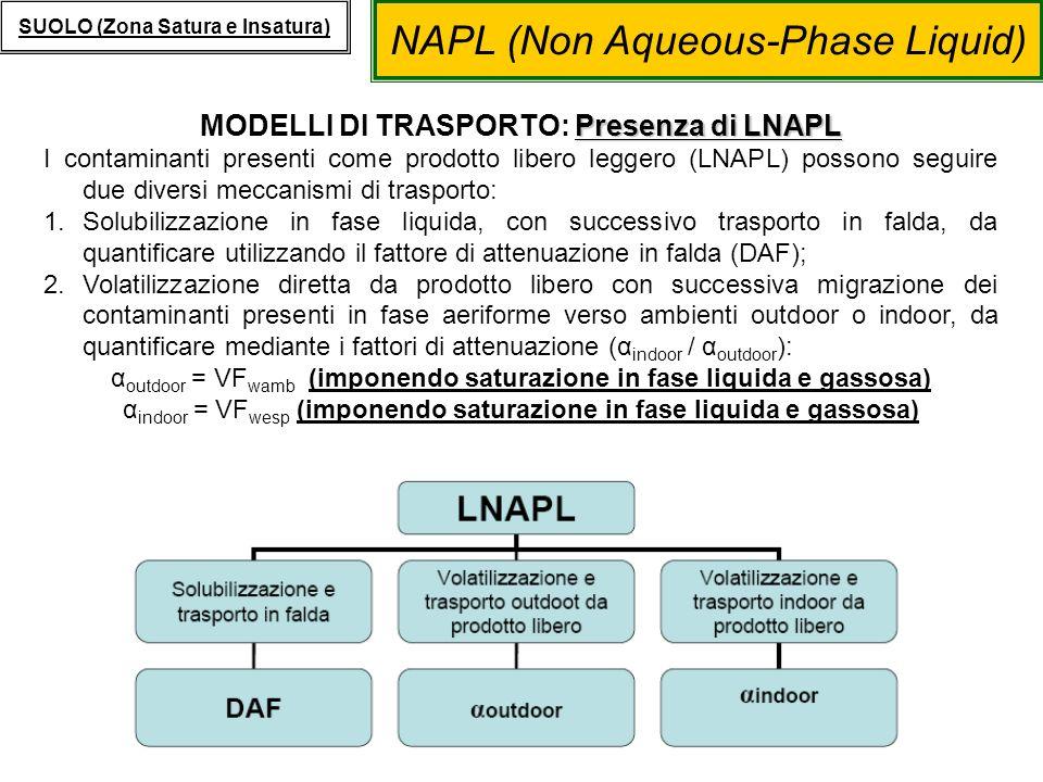MODELLI DI TRASPORTO: Presenza di LNAPL
