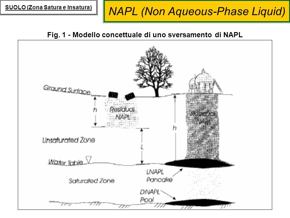 Fig. 1 - Modello concettuale di uno sversamento di NAPL