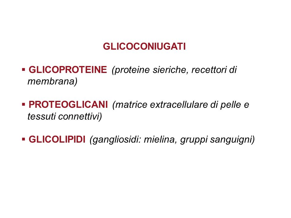GLICOCONIUGATI GLICOPROTEINE (proteine sieriche, recettori di membrana) PROTEOGLICANI (matrice extracellulare di pelle e tessuti connettivi)