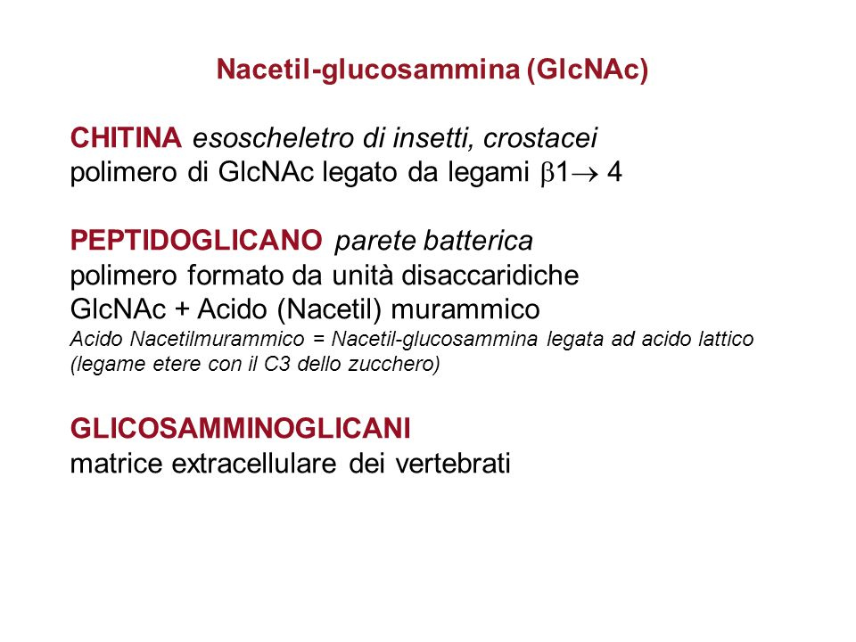 Nacetil-glucosammina (GlcNAc)