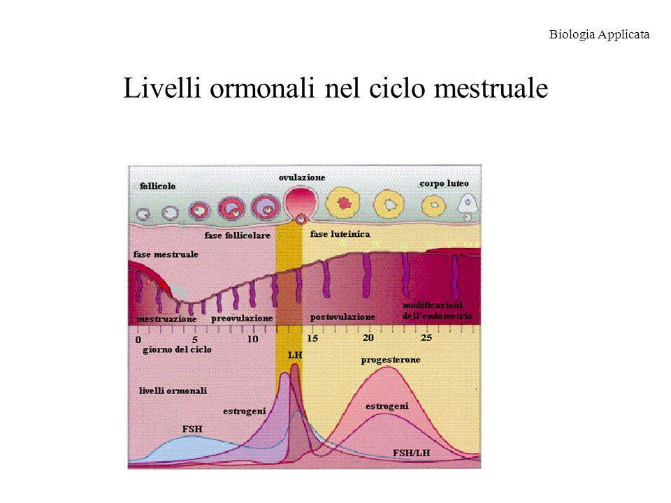 Livelli ormonali nel ciclo mestruale