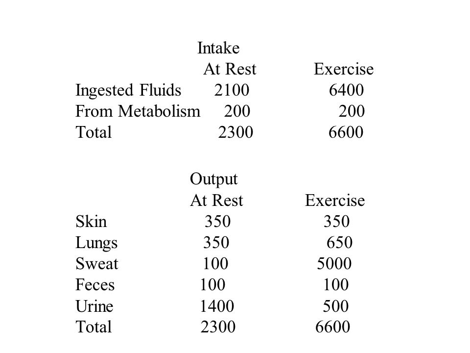 Intake At Rest Exercise Ingested Fluids 2100 6400 From Metabolism 200 200 Total 2300 6600