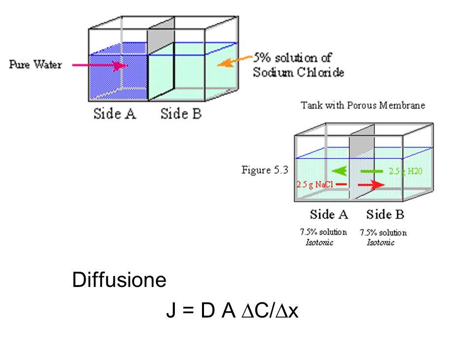 Diffusione J = D A C/x