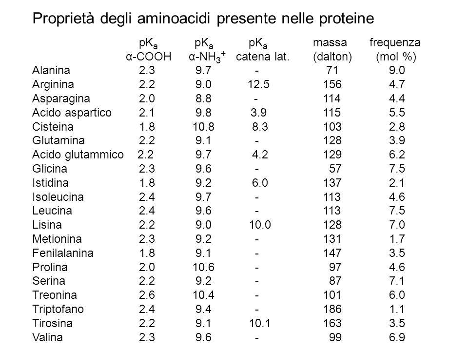 Proprietà degli aminoacidi presente nelle proteine