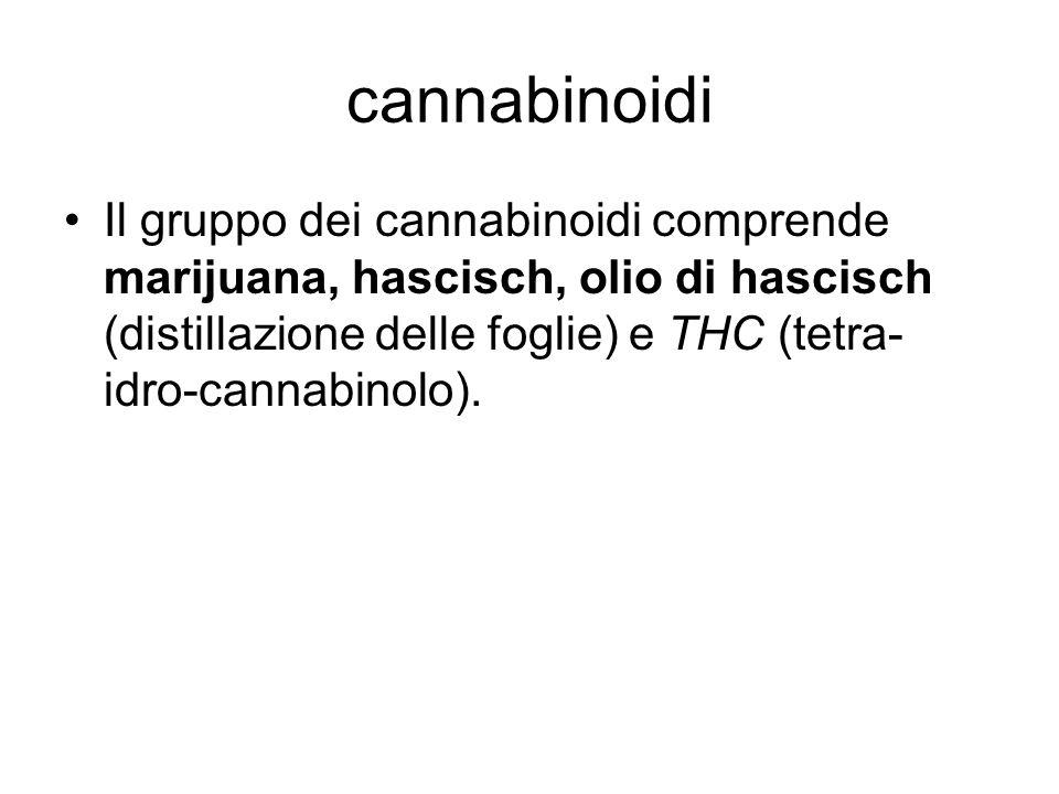 cannabinoidi Il gruppo dei cannabinoidi comprende marijuana, hascisch, olio di hascisch (distillazione delle foglie) e THC (tetra-idro-cannabinolo).